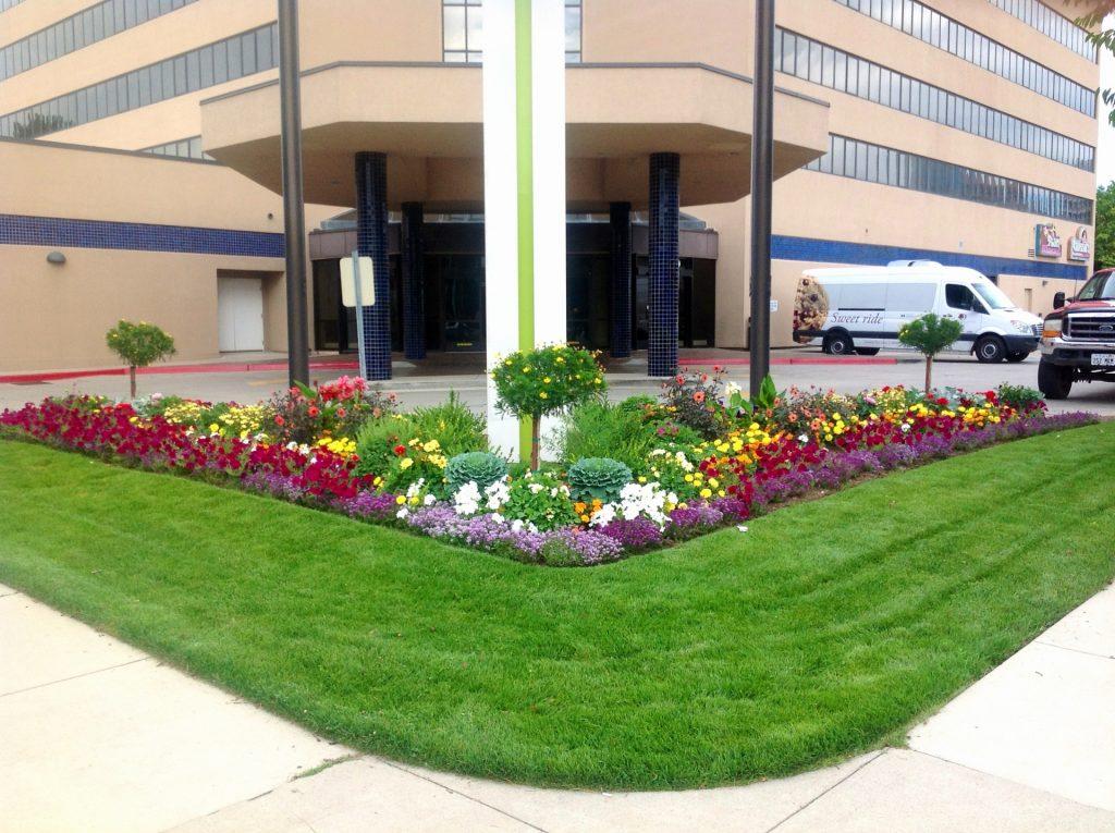 Wide corner planter